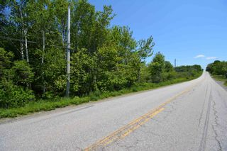 Photo 4: Lot Townshipline Road in Ohio: 401-Digby County Vacant Land for sale (Annapolis Valley)  : MLS®# 202114115