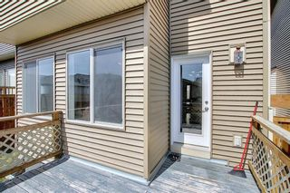 Photo 44: 55 Nolanfield Terrace NW in Calgary: Nolan Hill Detached for sale : MLS®# A1094536