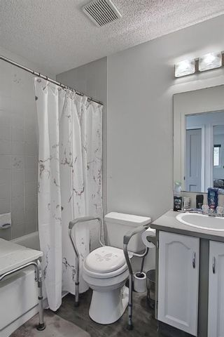 Photo 26: 94 Erin Meadow Close SE in Calgary: Erin Woods Detached for sale : MLS®# A1135362