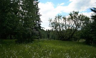Photo 45: 34072 Range Road 53: Rural Mountain View County Detached for sale : MLS®# A1111423