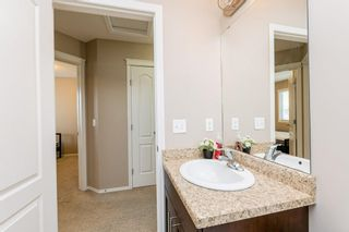Photo 29: 7322 ARMOUR Crescent in Edmonton: Zone 56 House for sale : MLS®# E4254924