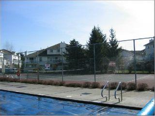 Photo 9: #3, 13951 70 Avenue: House for sale (East Newton)  : MLS®# 2414294