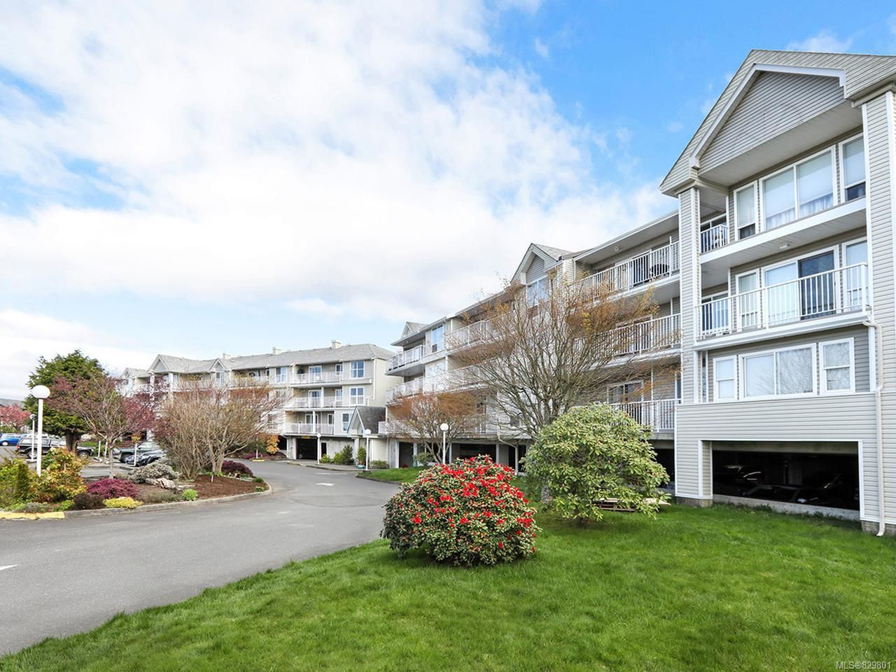 Photo 5: Photos: 311 155 Erickson Rd in CAMPBELL RIVER: CR Willow Point Condo for sale (Campbell River)  : MLS®# 829801