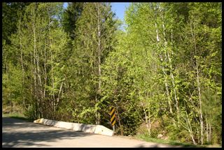 Photo 27: 21 6500 Southwest 15 Avenue in Salmon Arm: Panorama Ranch Vacant Land for sale : MLS®# 10230290