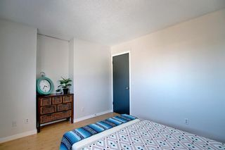 Photo 21: 66 Erin Green Way SE in Calgary: Erin Woods Detached for sale : MLS®# A1094602