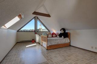 Photo 35: 236 Stevens Rd in : SW Prospect Lake House for sale (Saanich West)  : MLS®# 871772
