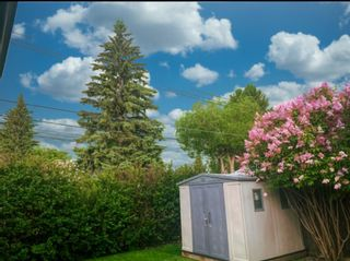 Photo 44: 23 Braden Crescent NW in Calgary: Brentwood Detached for sale : MLS®# A1073272
