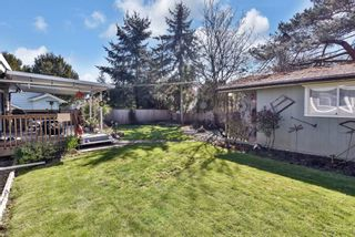 Photo 29: 17254 61B Avenue in Surrey: Cloverdale BC House for sale (Cloverdale)  : MLS®# R2566714