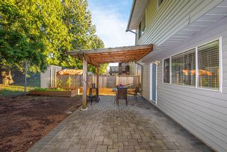 Photo 35: 20489 DALE Drive in Maple Ridge: Southwest Maple Ridge House for sale : MLS®# R2360254