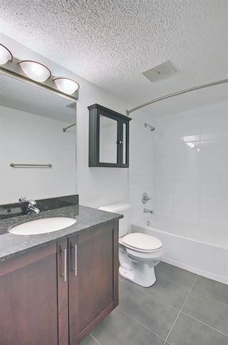 Photo 21: 303 4455A Greenview Drive NE in Calgary: Greenview Apartment for sale : MLS®# A1108022