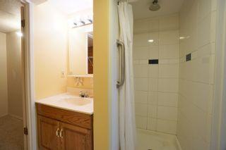 Photo 37: 11 Roe St in Portage la Prairie: House for sale : MLS®# 202120510