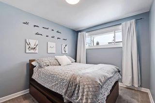 Photo 14: 710 53 Avenue SW in Calgary: Windsor Park Semi Detached for sale : MLS®# A1067398