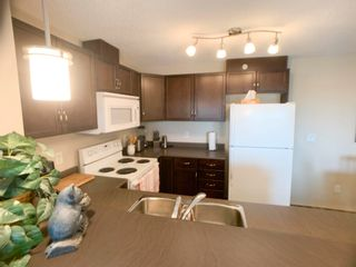Photo 11: 414 6070 SCHONSEE Way in Edmonton: Zone 28 Condo for sale : MLS®# E4248308