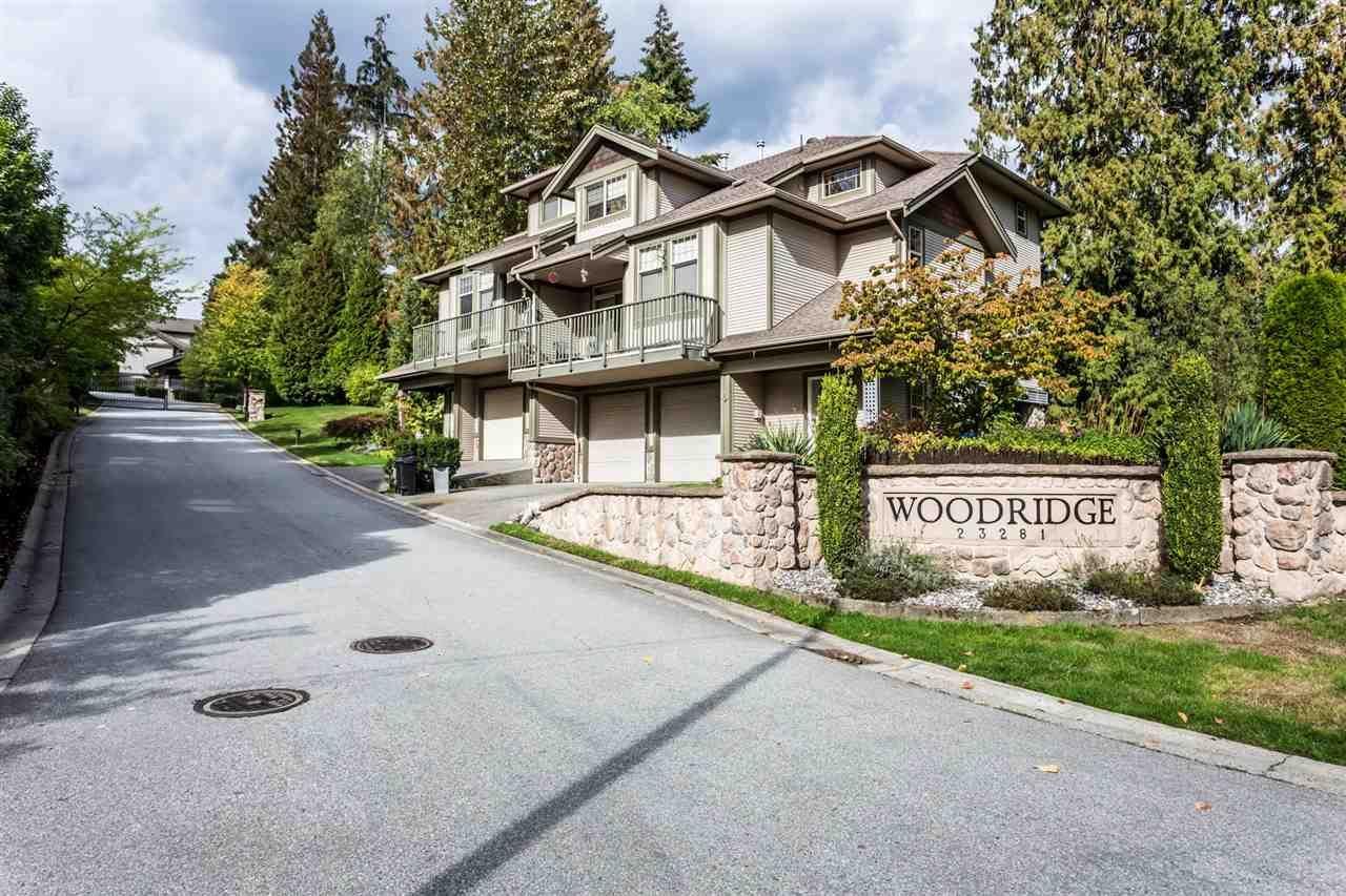 "Main Photo: 16 23281 KANAKA Way in Maple Ridge: Cottonwood MR Townhouse for sale in ""Woodridge"" : MLS®# R2321867"