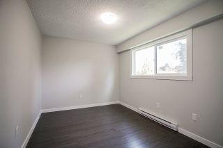 Photo 12: 20845 STONEY Avenue in Maple Ridge: Southwest Maple Ridge House for sale : MLS®# R2430197