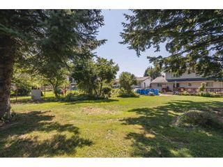 "Photo 5: 34567 FERGUSON Avenue in Mission: Hatzic House for sale in ""Hatzic Bench"" : MLS®# R2599936"