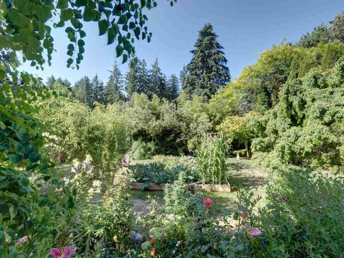 Photo 24: Photos: 2595 SYLVAN Drive: Roberts Creek House for sale (Sunshine Coast)  : MLS®# R2481642