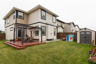 Photo 28: 353 WALDEN Square SE in Calgary: Walden Detached for sale : MLS®# C4208280
