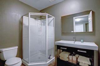 Photo 18: 136 Prestwick Estate Way SE in Calgary: McKenzie Towne Detached for sale : MLS®# A1151571