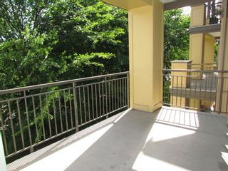 """Photo 13: #306B 45595 TAMIHI WAY in CHILLIWACK: Vedder S Watson-Promontory Condo for rent in """"THE HARTFORD"""" (Sardis)"""