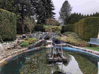 Photo 3: 15 13507 81  AVE Avenue in Surrey: Queen Mary Park Surrey Manufactured Home for sale : MLS®# R2444132