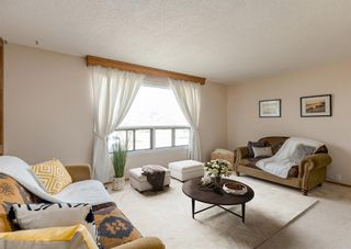 Photo 13: 3411 Doverthorn Road SE in Calgary: Dover Semi Detached for sale : MLS®# A1126939