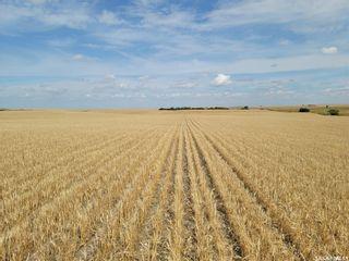 Photo 5: Richmound Land in Enterprise: Farm for sale (Enterprise Rm No. 142)  : MLS®# SK867913
