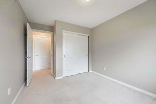 Photo 24: 427 278 SUDER GREENS Drive in Edmonton: Zone 58 Condo for sale : MLS®# E4249170