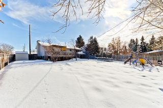 Photo 29: 127 Manora Drive NE in Calgary: Marlborough Park Detached for sale : MLS®# A1074589
