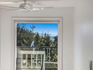 Photo 18: 3855 BAYRIDGE Avenue in West Vancouver: Bayridge House for sale : MLS®# R2540779