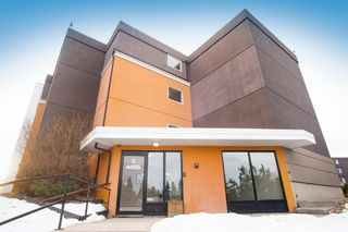 Photo 3: 302C 4455 Greenview Drive in Calgary: Greenview Apartment for sale : MLS®# A1065652