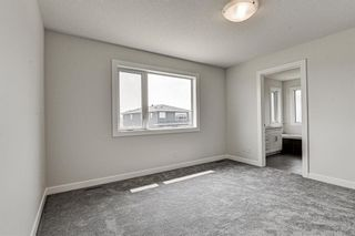 Photo 30: 216 Red Sky Terrace NE in Calgary: Redstone Detached for sale : MLS®# A1125516