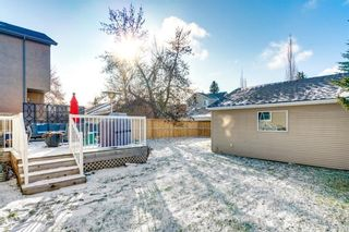 Photo 47: 4641 20 Street SW in Calgary: Altadore Detached for sale : MLS®# A1089417