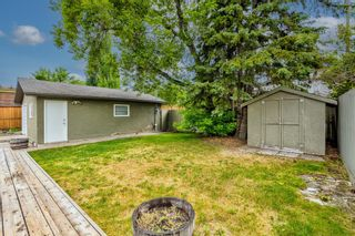 Photo 47: 6416 Larkspur Way SW in Calgary: North Glenmore Park Detached for sale : MLS®# A1127442