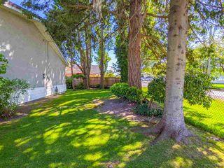 Photo 11: 3820 EARLMOND Avenue in Richmond: Seafair House for sale : MLS®# R2582825