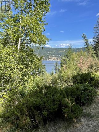 Photo 14: 1803 SOUTH LAKESIDE DRIVE in Williams Lake: Vacant Land for sale : MLS®# R2612495