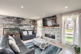 Photo 16: 6511 24 Avenue NE in Calgary: Pineridge Detached for sale : MLS®# A1152283