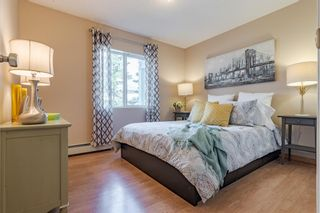 Photo 16: 206 55 Arbour Grove Close NW in Calgary: Arbour Lake Apartment for sale : MLS®# A1107182