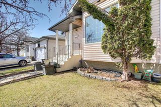 Photo 33: 78 Appleburn Close SE in Calgary: Applewood Park Detached for sale : MLS®# A1100841