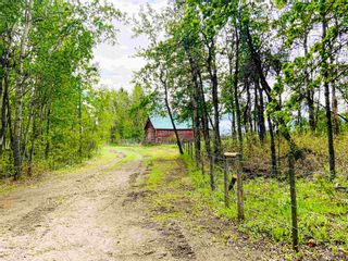 Photo 35: 454064 RGE RD 275: Rural Wetaskiwin County House for sale : MLS®# E4246862