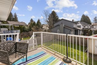 Photo 7: 20438 DALE Drive in Maple Ridge: Southwest Maple Ridge House for sale : MLS®# R2548457