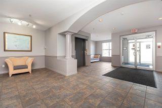 Photo 8: 319 10421 42 Avenue in Edmonton: Zone 16 Condo for sale : MLS®# E4241411