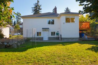 Photo 59: 1314 Balmoral Rd in : Vi Fernwood House for sale (Victoria)  : MLS®# 857803