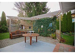 Photo 14: 8827 157TH STREET in Surrey: Fleetwood Tynehead House for sale : MLS®# R2221835