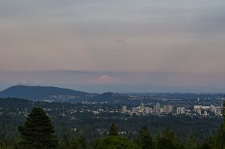 Photo 6: 1124 HILLSIDE Road in West Vancouver: British Properties House for sale : MLS®# R2613844