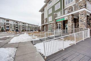 Photo 18: 3109 11 Mahogany Row SE in Calgary: Mahogany Apartment for sale : MLS®# A1075896