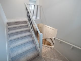 Photo 23: 20031 29 Avenue in Edmonton: Zone 57 House for sale : MLS®# E4257169