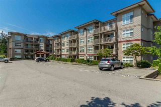 """Photo 1: 105 2515 PARK Drive in Abbotsford: Abbotsford East Condo for sale in """"Viva on Park"""" : MLS®# R2435735"""
