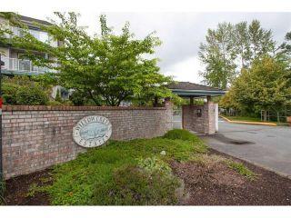 Photo 2: 312 27358 32 Avenue in Langley: Aldergrove Langley Condo for sale : MLS®# R2115816