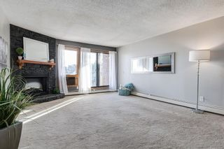 Photo 14: 203 333 2 Avenue NE in Calgary: Crescent Heights Apartment for sale : MLS®# A1077387